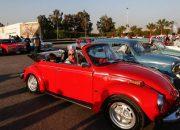 انطلاق ملتقى القاهرة السابع للسيارات الكلاسيكية 23 مارس بمشاركة أكثر من 200 سيارة